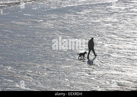 A man walks his dog along a Cornish beach - Stock Photo