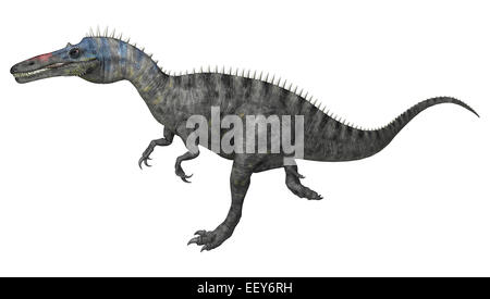 3D digital render of a running dinosaur Suchomimus or Suchomimus tenerensis isolated on white background - Stock Photo