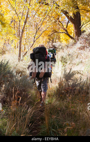 USA, Utah, Grand Gulch, Two people hiking in forest - Stock Photo