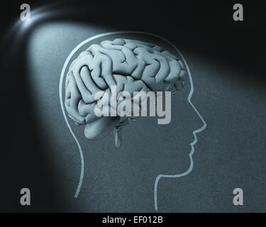 Head and brain drawing in spot of light - Stock Photo