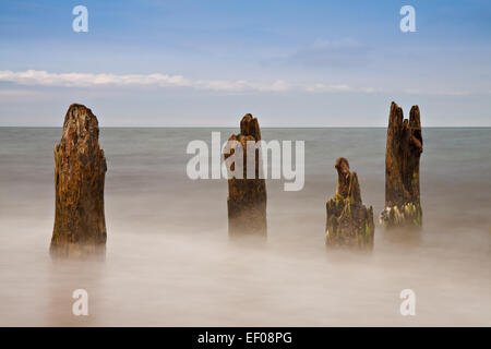 Groynes on the Baltic coast - Stock Photo