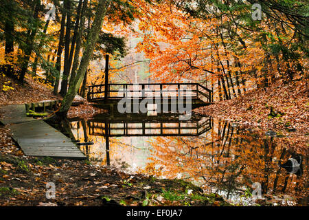 Chenango Valley State Park autumn landscape nature trail with secluded bridge in Chenango Forks New York Broome - Stock Photo