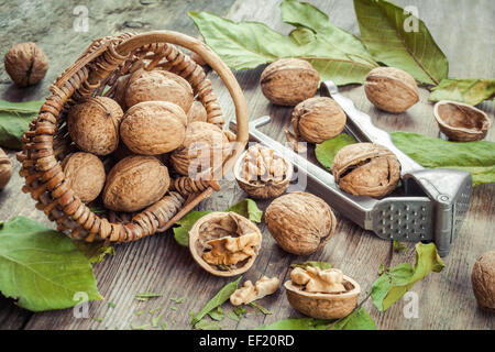 Walnuts, nutcracker and basket on old rustic table - Stock Photo