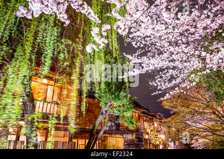 Spring foliage in Kyoto, Japan at night. - Stock Photo