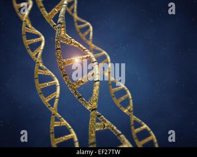 Genetically modified DNA molecules , GMO , Genetic engineering - Stock Photo