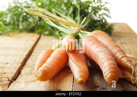 Carrots - Stock Photo