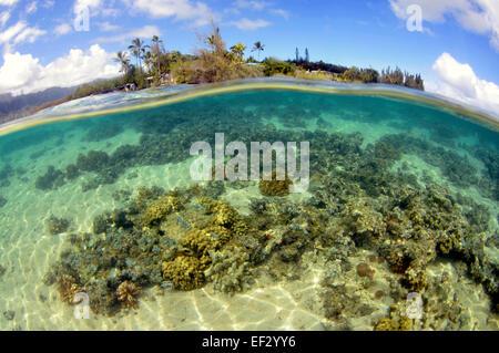 Coconut Island, Kaneohe Bay, Oahu, Hawaii, USA - Stock Photo