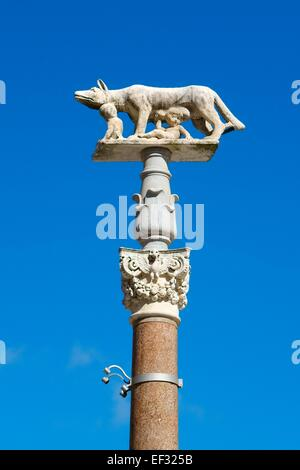Pillar of the she-wolf with Romulus and Remus in front of the Duomo of Siena, Cattedrale di Santa Maria Assunta, - Stock Photo