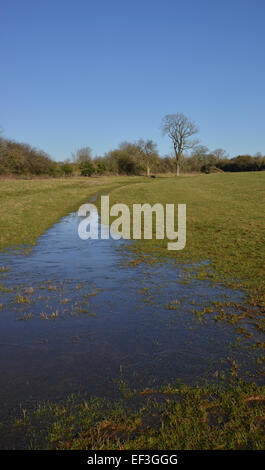 Water in field near the brewery, Hook Norton, Oxfordshire - Stock Photo
