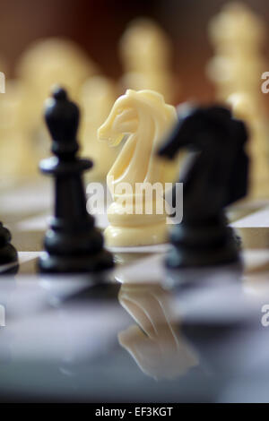 White Knight on Chess Board Along With Black Pieces - Stock Photo