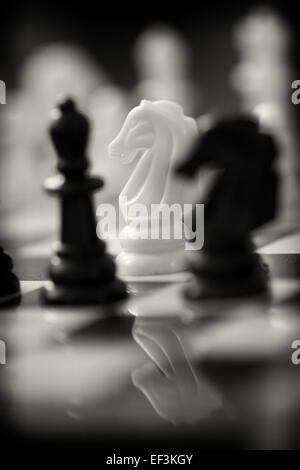 White Knight on Chess Board - Stock Photo