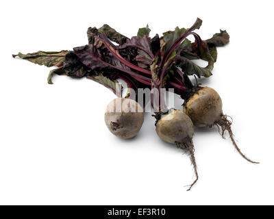 fresh beetroot - Stock Photo