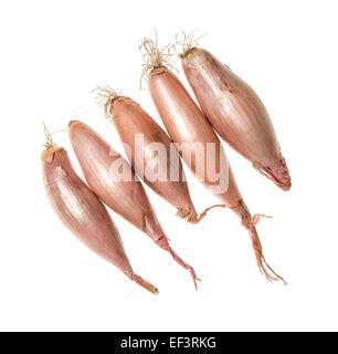 Shallots cutout on white background - Stock Photo