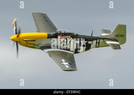 A P-51 Mustang named 'Ferocious Frankie' and owned by the Old Flying Machine Company at Duxford, Cambs, UK - Stock Photo