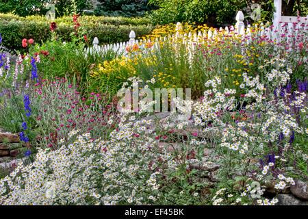 An informal low water garden - Stock Photo