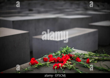 Berlin, Germany. 27th Jan, 2015. Flowers are seen at the Memorial to the Murdered Jews of Europe, also called the - Stock Photo