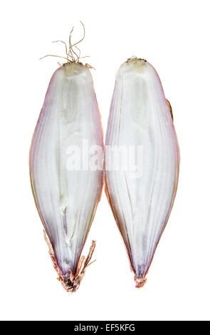 Two halves of fresh shallots - Stock Photo