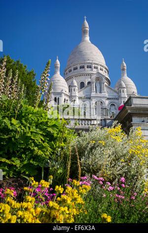 Flowers in the garden below Basilique du Sacre Coeur, Montmartre, Paris, France - Stock Photo