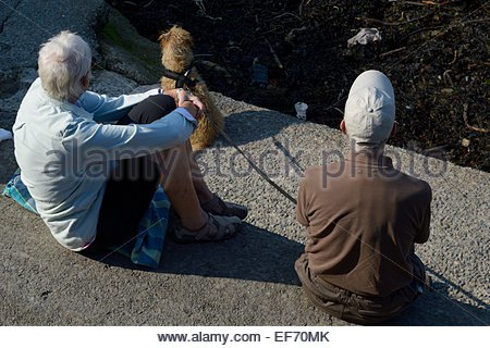 An older couple sitting in the sunshine on concrete steps with their pet dog - Stock Photo