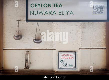 SCALES INSIDE TEA PLANTATION - Stock Photo