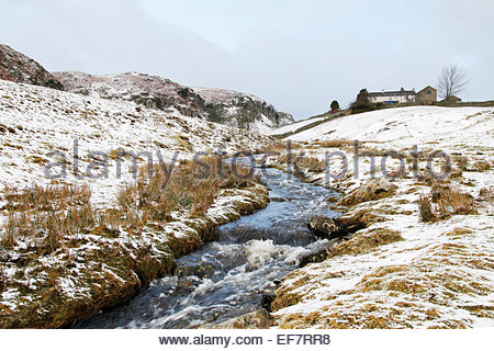 Holwick, Middleton-in-Teesdale, Co Durham, UK. 28th January, 2015. UK Weather: The driving wind and snow returns - Stock Photo