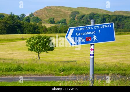 Sign post to Haltwhistle  looking across the B6318 Hadrian's Wall Cycleway sign near Greenhead Cumbria England United - Stock Photo