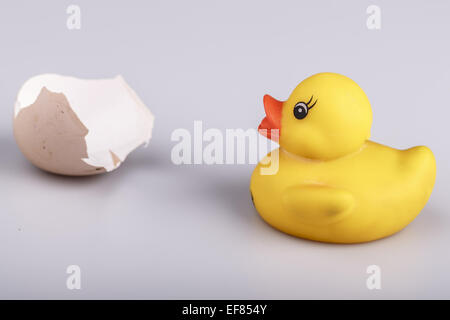 Beautiful yellow small plastic duck with egg isolated on a white background - Stock Photo