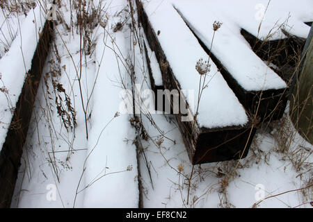 Hidden under the snow and sleepers abandoned the tracks of a train, a secret garden resists as every cold winter - Stock Photo