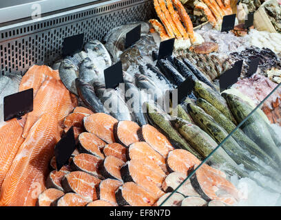 Choice of fresh fish in the refrigerated counter. Close up shot. - Stock Photo