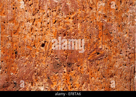 closeup of an old wooden board, to use as a background - Stock Photo