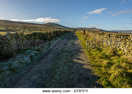 On Cam High Road (Roman Road) near Bainbridge, Swaledale in the Yorkshire Dales, North Yorkshire, England. - Stock Photo