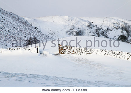 Holwick, Middleton-in-Teesdale, Co Durham, UK 29th January 2015. UK weather. Over 9cm of snow overnight in this - Stock Photo