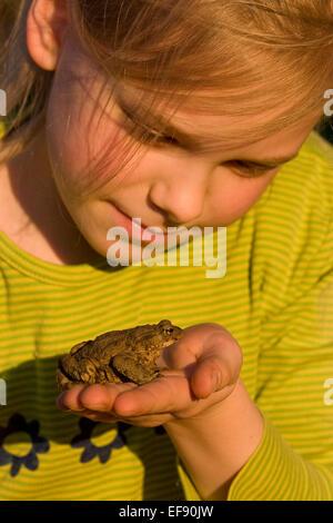 European common toad, toads, girl, child, children, Mädchen, Kind, Erdkröte, Kröte, Kröten, Hand, Bufo bufo