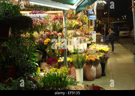 Hong Kong. 29th Jan, 2015. Chinese New Year: A woman talks on her cell phone outside a flower stall © Robert SC - Stock Photo