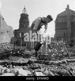 The photo by famous photographer Richard Peter sen. shows a young man who is growing vegetables, surrounded by ruins - Stock Photo