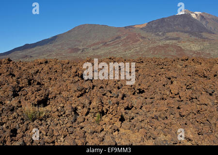 Lava field, Teide and Pico Viejo, Las Cañadas del Teide, Teide National Park, - Stock Photo