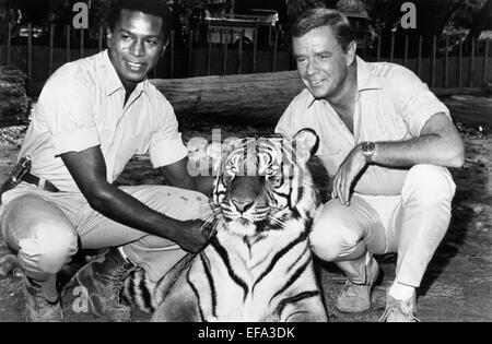 HARI RHODES, MARSHALL THOMPSON, DAKTARI, 1966 - Stock Photo