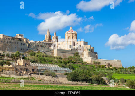 St Pauls Cathedral and Skyline of medieval walled city Mdina Malta EU Europe - Stock Photo