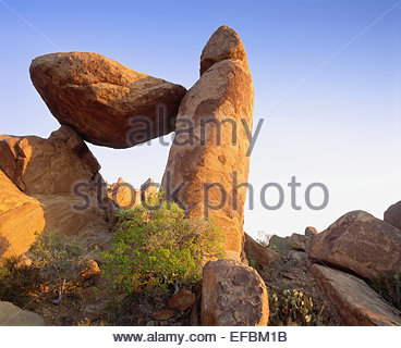 A balanced rock forms The Window in the Grapevine Hills at sunrise.  Chihuahuan Desert.  Big Bend National Park, - Stock Photo