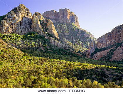 Upper Green Gulch, near Panther Pass, Chisos Mountains.  Big Bend National Park, Texas - Stock Photo
