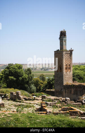 Stork nesting on ancient site - Stock Photo
