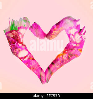 double exposure of woman hands forming a heart and flowers, on a pink background - Stock Photo