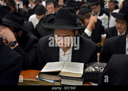 A group of religious Jewish boys studying at a synagogue in Crown Heights, Brooklyn, New York - Stock Photo