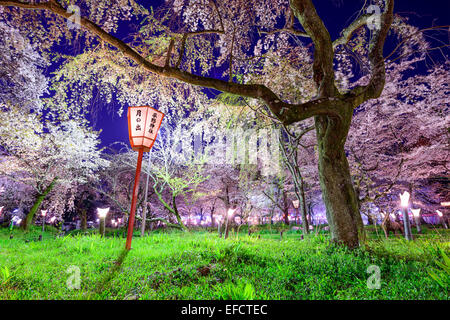 Kyoto, Japan at Hirano Temple festival grounds in spring. The lantern reads 'Moonrise, Hirano Temple' - Stock Photo