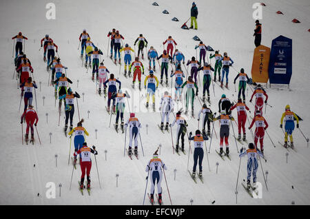 Strbske Pleso, Slovakia. 31st Jan, 2015. Skiers compete during the Cross Country Skiing: Ladies' 15km Free Mass - Stock Photo