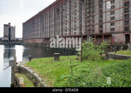 The Stanley Dock Tobacco Warehouse, built in 1901, is the world's largest brick warehouse and is grade II listed. - Stock Photo