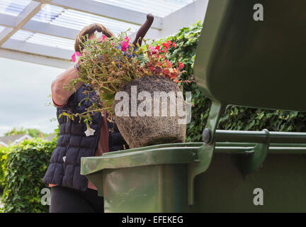 Woman placing garden waste in recycling bin - Stock Photo