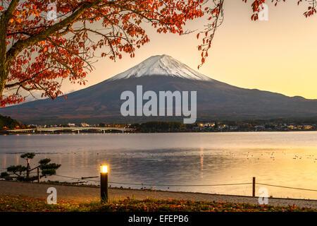 Mt. Fuji with autumn foliage at Lake Kawaguchi in Japan. Stock Photo
