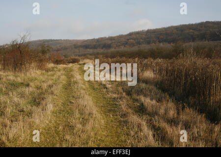 Road on hillside meadow In mountain at springtime - Stock Photo