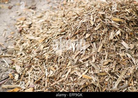 Wood chip mulch  on the ground, garden - Stock Photo